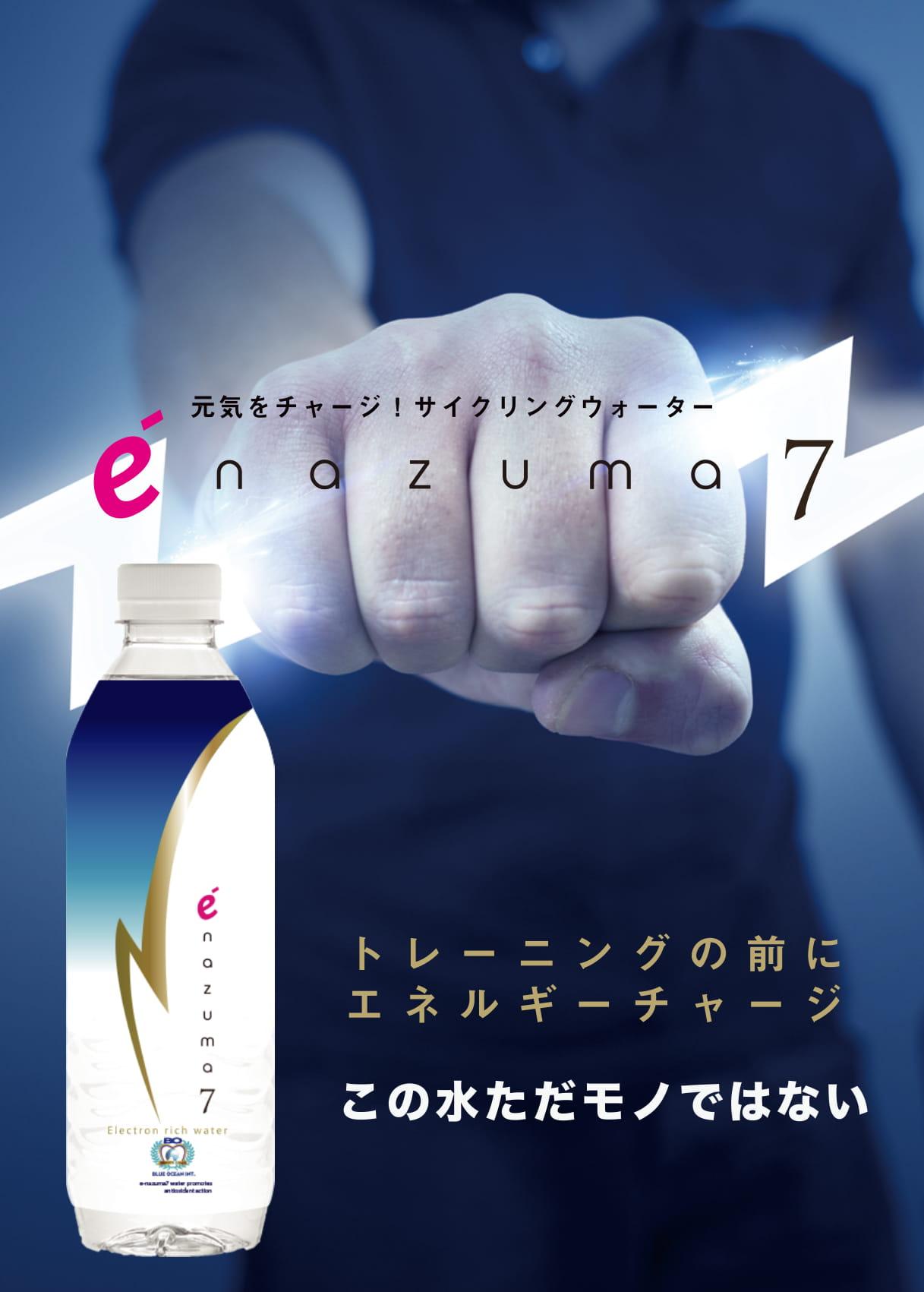 enazuma7guide-forweb-1